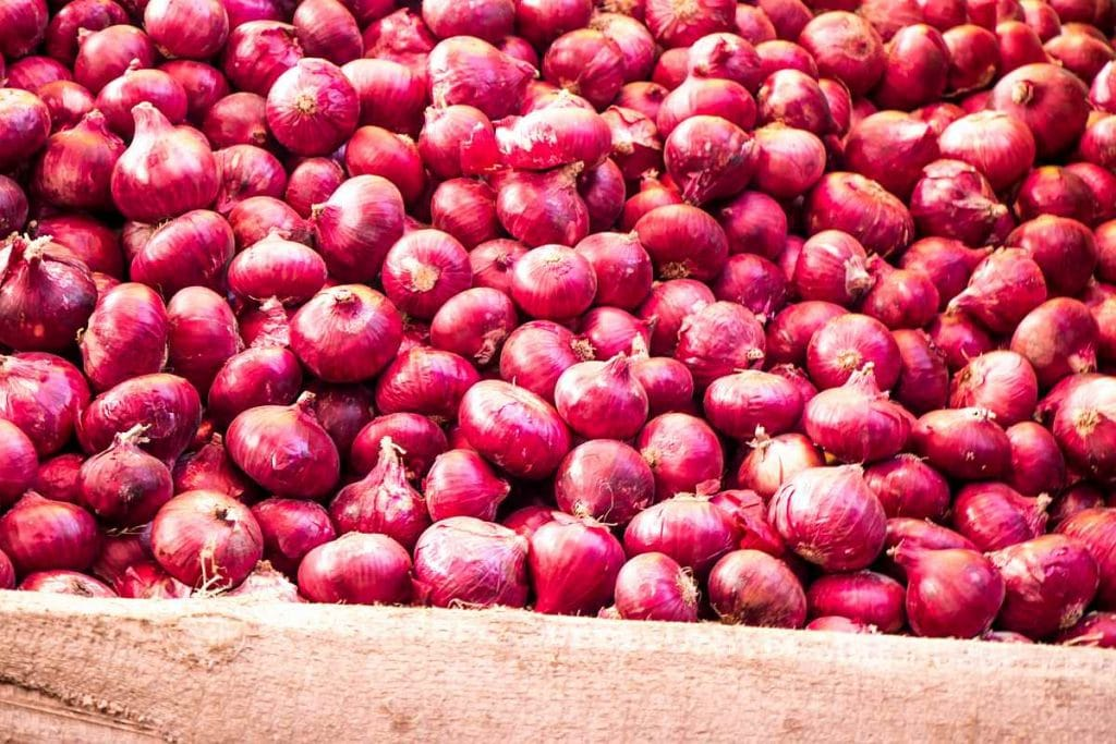 Bangalore Rose Krishnapuram Onions Export